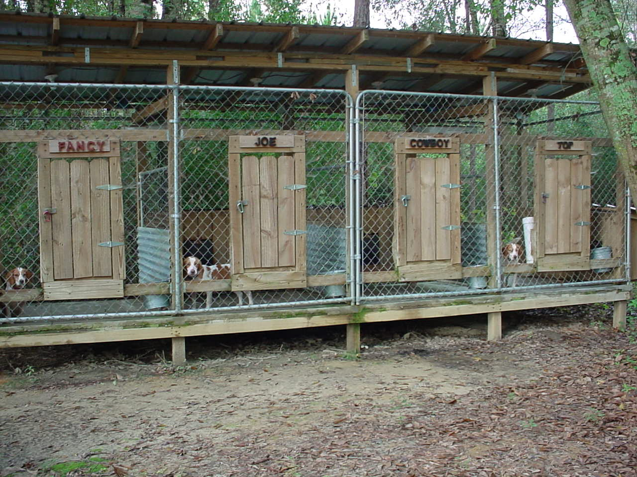 Dog Kennels Dog Pens Kennel Roofing And Insulated Dog